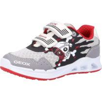 GEOX Sneaker Low für Jungen grau/rot Junge Gr. 27